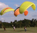 Kiting in the field with friends